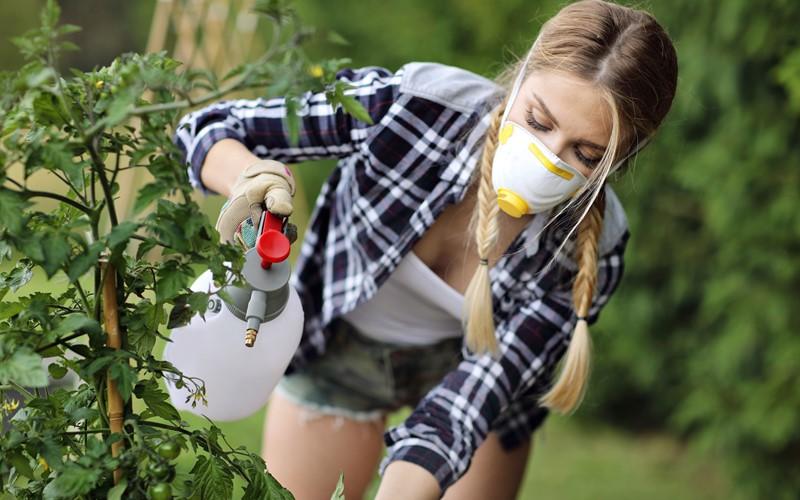 Zu viele Pestizide in St. Galler Bächen und Flüssen