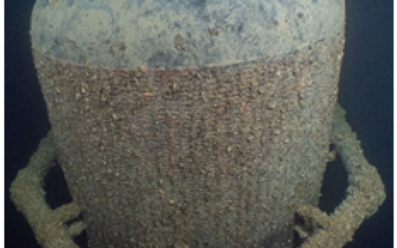 Misure tecniche contro la cozza quagga